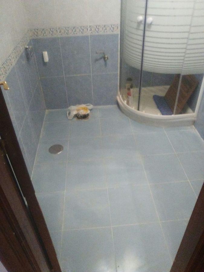 Picar Rayola Cuarto De Baño Precios  chicago