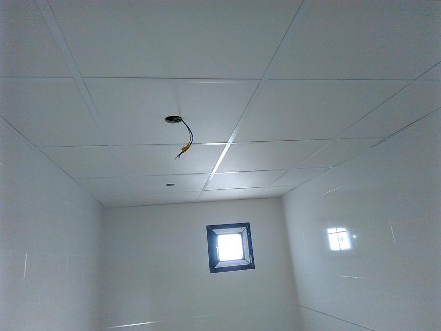 foto techo desmontable ba o de aislamientos nico 1030746