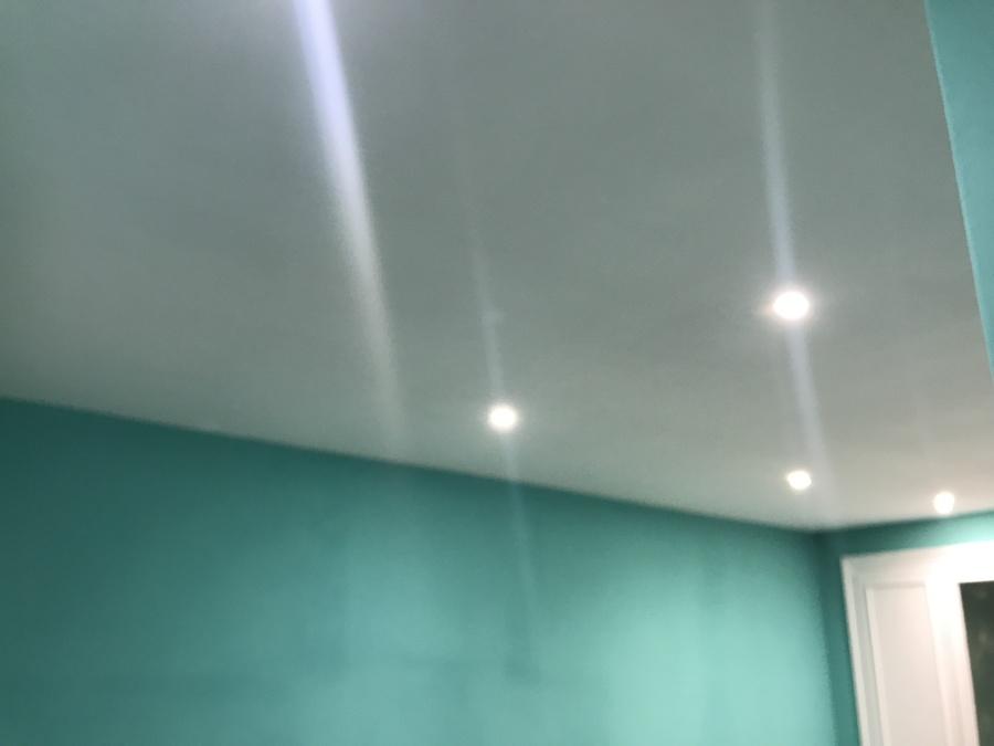 Techo, nueva iluminación y pintura