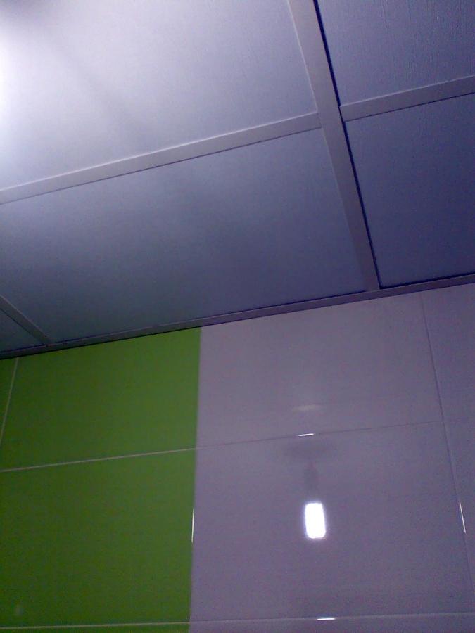 Techos decorativos ideas reformas ba os - Falsos techos decorativos ...