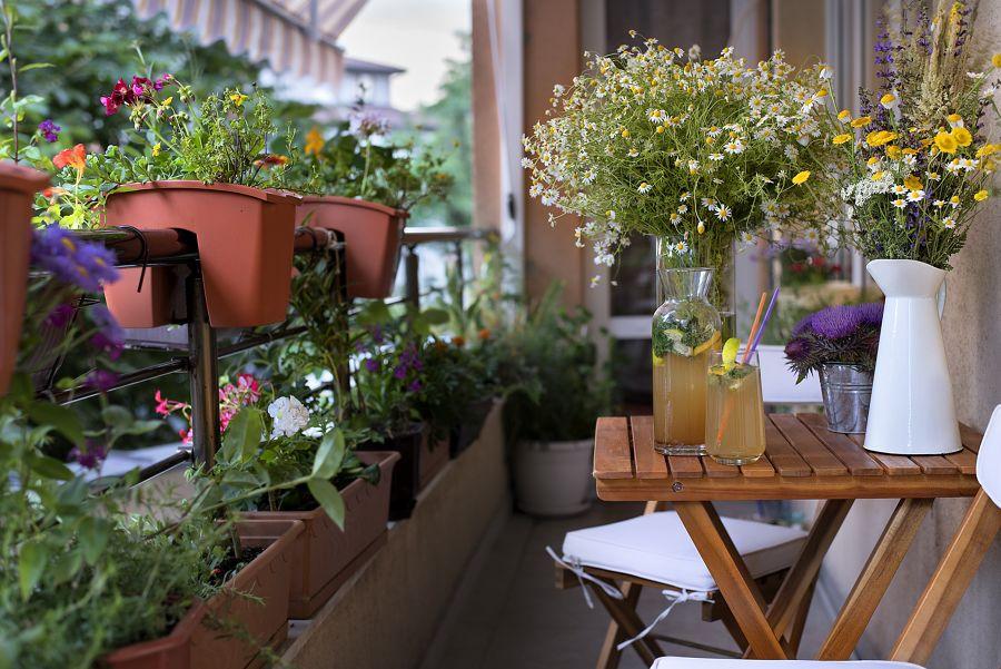 Terraza con flores silvestres y macetas