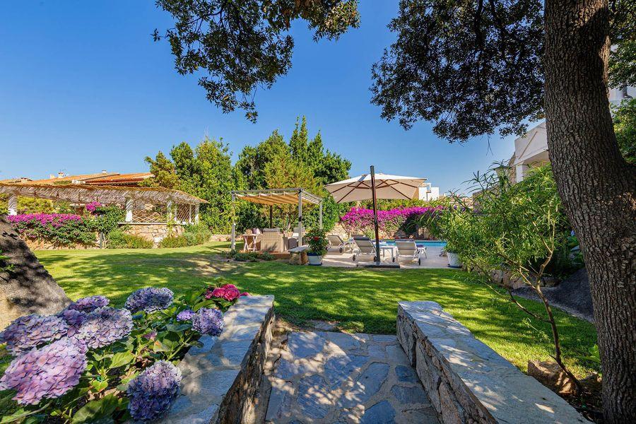 Terraza jardín
