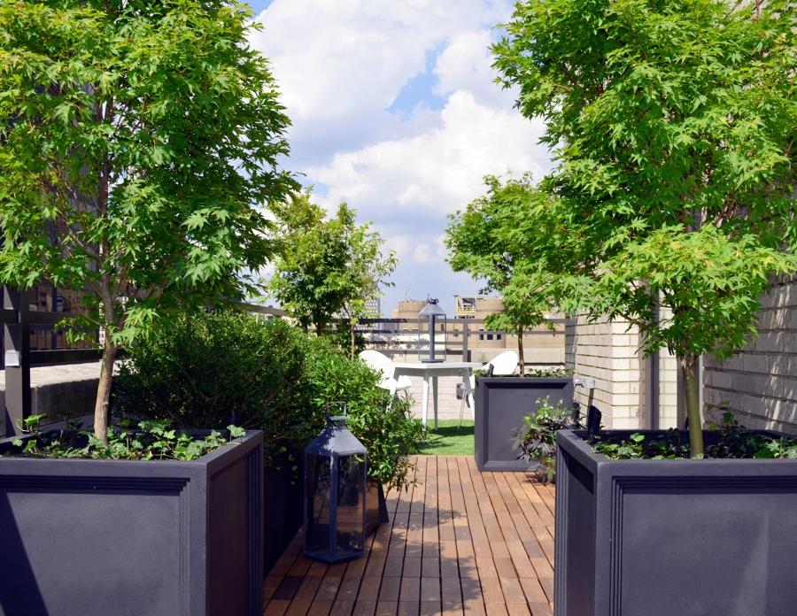 Foto terrazas ticos muy verdes de miriam mart 841593 - Plantas para terraza con mucho sol ...