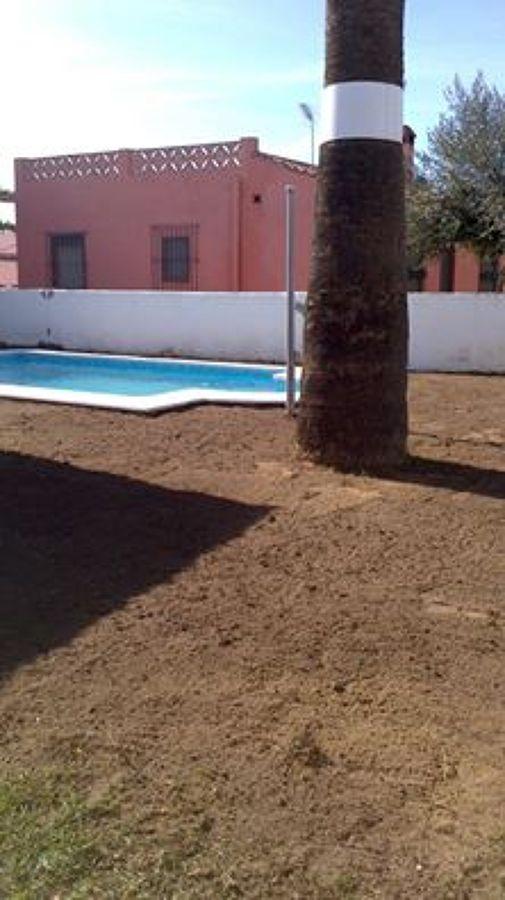 Terreno nivelado y sembrado de semillas de césped