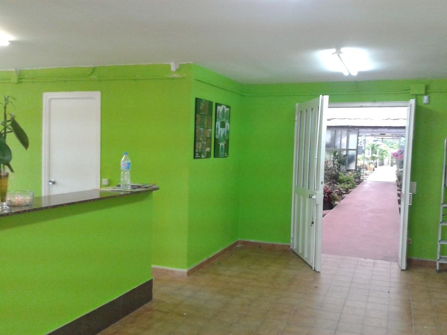 Trabajo de pintura en garden pon pintores rios pintura y for Trabajo para pintores