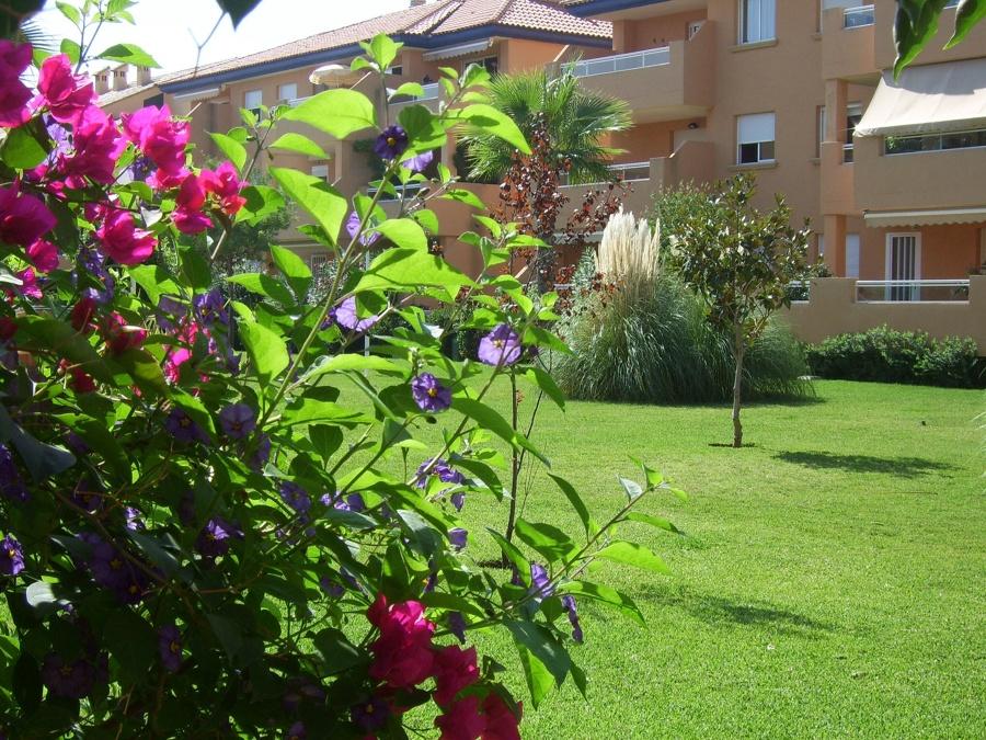 Trabajos de abonado y tratamientos fitosanitarios para que su jardín luzca asi