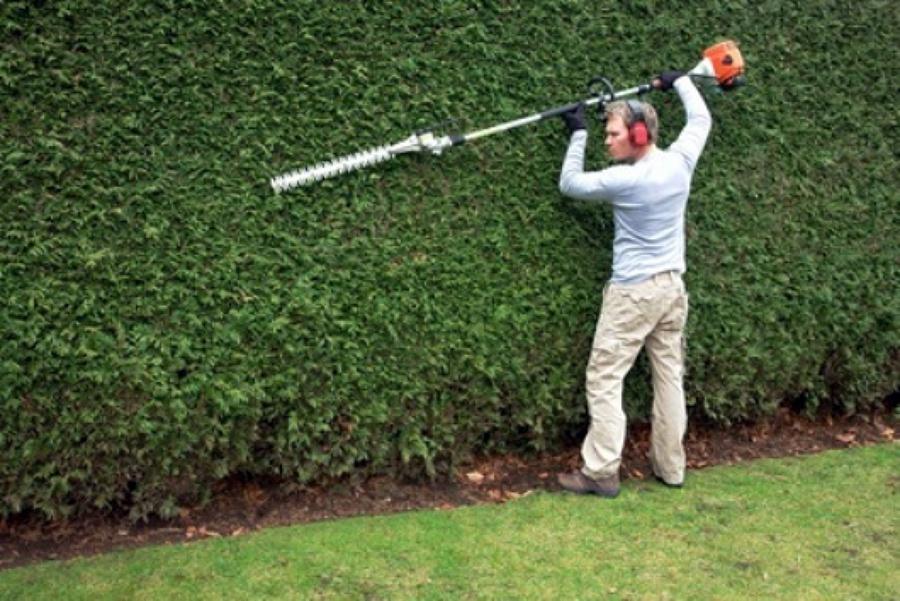 Foto Trabajos De Jardiner A De Servicity 459243