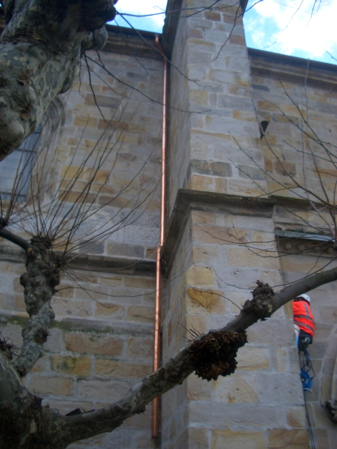 Trabajos verticales en Basilica de Begoña