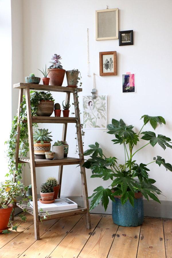 Estantes para plantas elegant estante de plantas with - Estantes para macetas ...