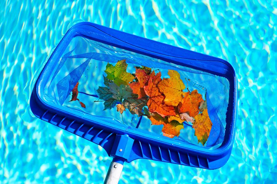 C mo limpiar el agua de tu piscina y dejarla como los for Productos de limpieza de piscinas