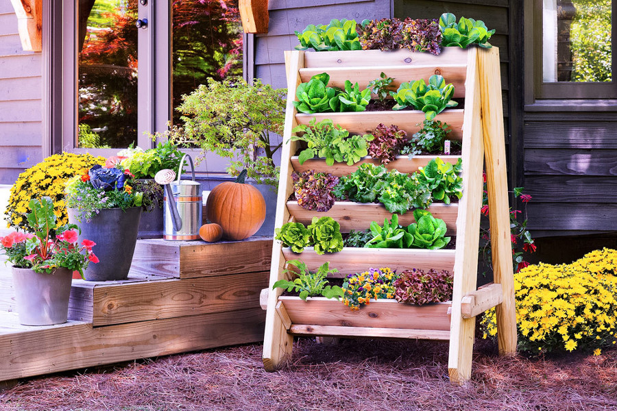 vertical-lettuce-planter-web2-1024x683