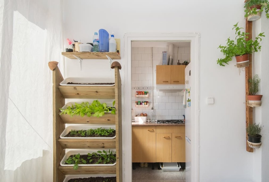 Vista a la cocina y al huerto vertical