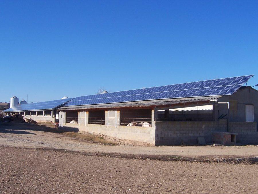 Vista de los paneles solares colocados en azotea