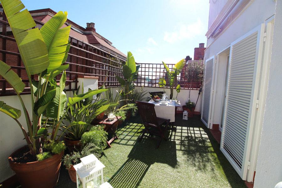Vista general de la terraza