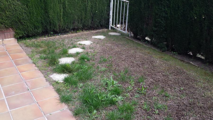 Vista general del patio antes de la limpieza y nivelación del terreno.