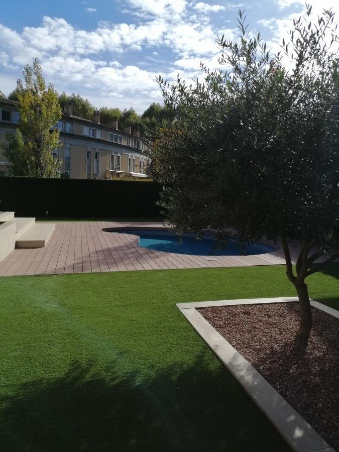 Vista izquierda olivo