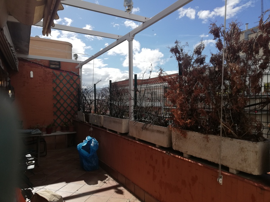 Vista terraza antes del trabajo