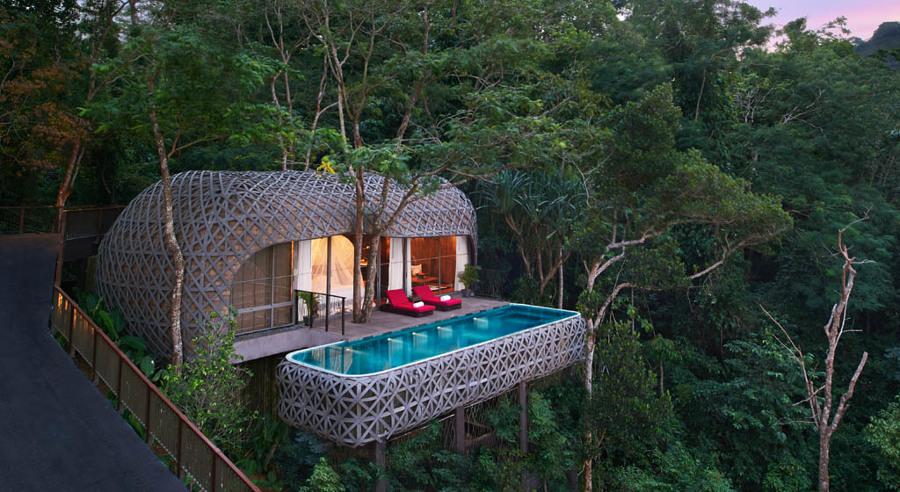 casa de árbol con piscina