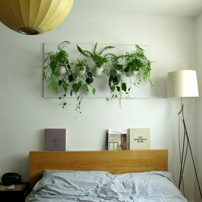 ¿Sin terraza ni balcón? Cómo hacer un jardín interior
