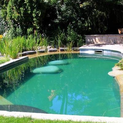 Presupuesto construir piscina natural en a coru a online - Construir piscina natural ...