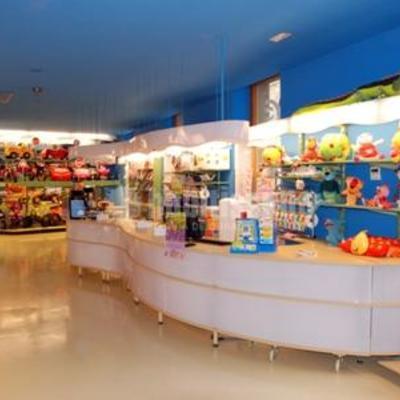 Botiga de joguines