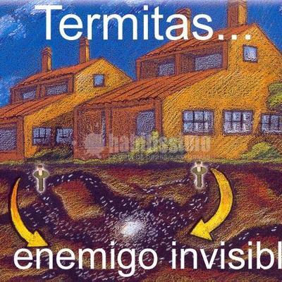 Eliminar termitas, eliminar carcomas. Tratamientos garantizados