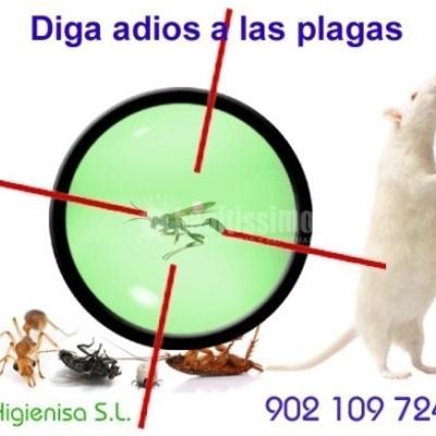Desinfección, fumigación, desratización, desinsectación