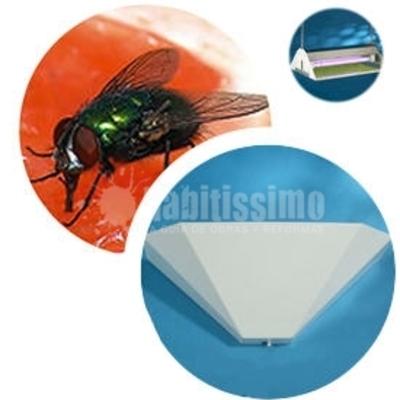 Control Plagas Insectos Voladores