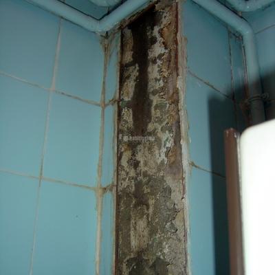 Reparación Bajantes Baño