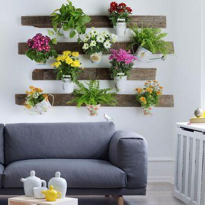 5 Razones para crear con plantas tu propio oasis en casa