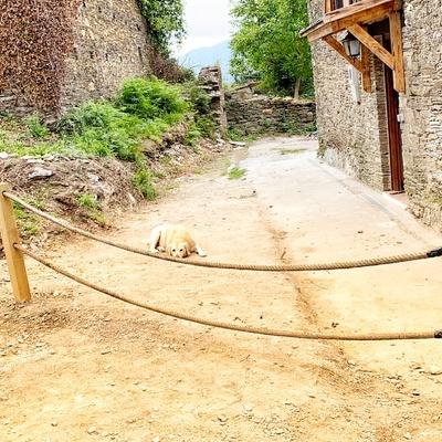Decoracion y detalles casa Galicia