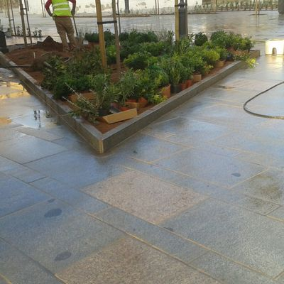 Remodelacion Plaza Cristo de Gracia Cordoba