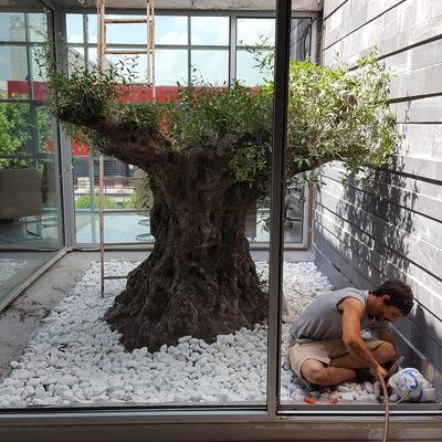 Ahora si tienes un jardín en tu oficina.