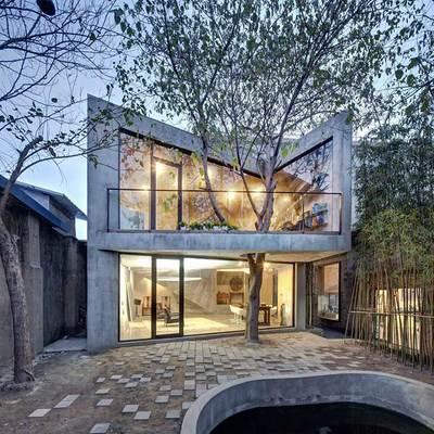 Hogares diferentes: casas con árboles en su interior