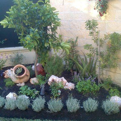 Restauración de jardín