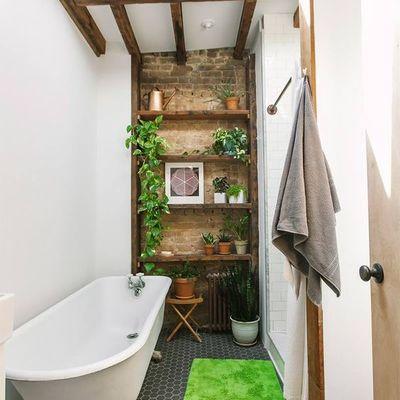 Baño con estanterías de madera y plantas