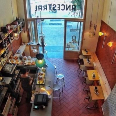 licencia actividad bar-cafetería