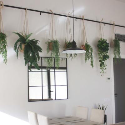 Barra de forja con plantas colgantes DIY