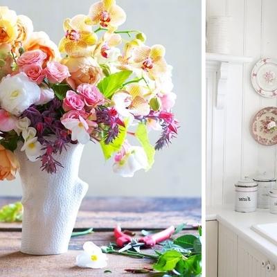 ¿Qué flores puedo plantar en mayo y en junio?