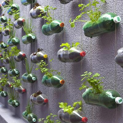 Cómo tener una casa verde y ecológica