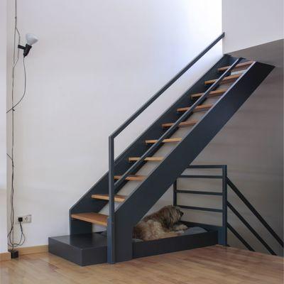 5 consejos para decorar tu casa si tienes mascota