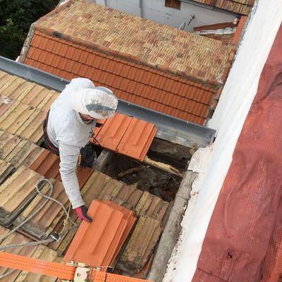 Reparación de tejado y reposición tejas