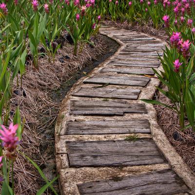 ¿Qué tipo de camino puedo usar en mi jardín?