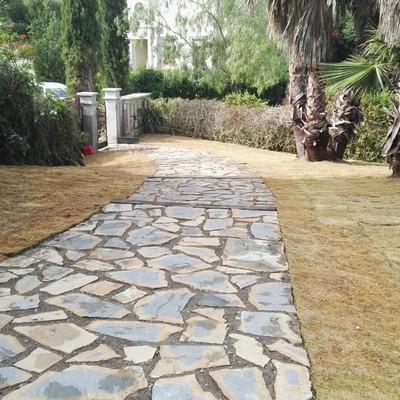 Camino de piedra entrada jardin