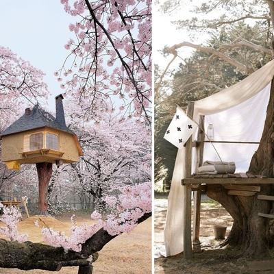 Haz tu propia casa fabulous haz tu propia casa with haz - Construye tu propia casa ...