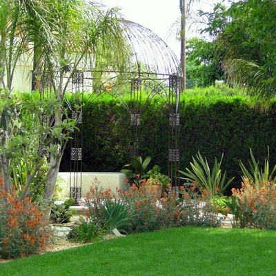 Jardín Exótico Y Urbano
