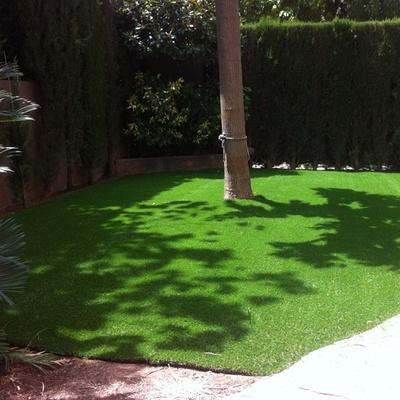 Precio jardineros en valencia habitissimo - Cesped artificial valencia ...