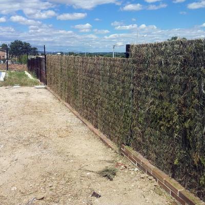 colocación de brezo en valla y realización de jardin
