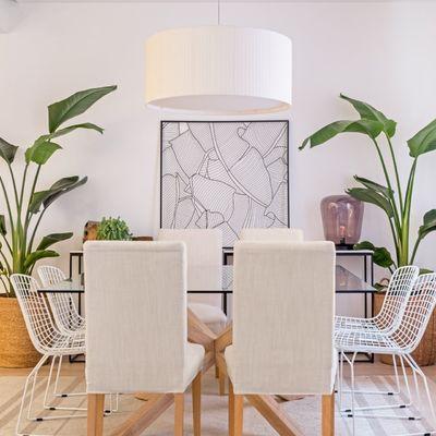 Te decimos qué planta poner en cada habitación de tu casa