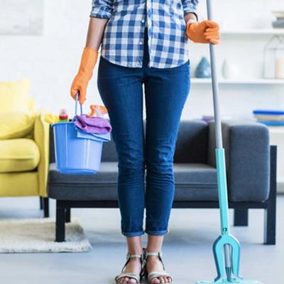 6 consejos para evitar plagas en tu hogar